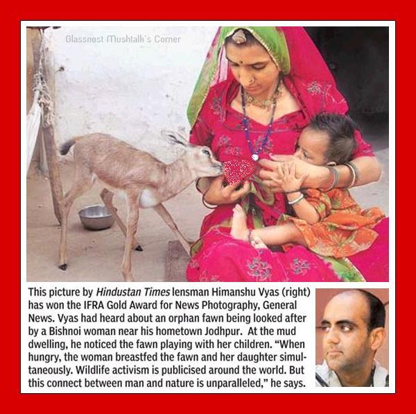 سینه شیرده زن هندی! یک سینه برای کودکش و سینه دیگر برای غزال